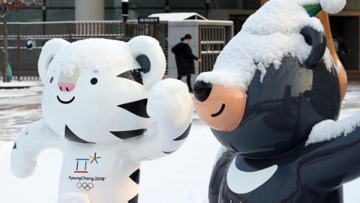 美国奥委会确定参加平昌冬奥会,白宫曾担心运动员安全