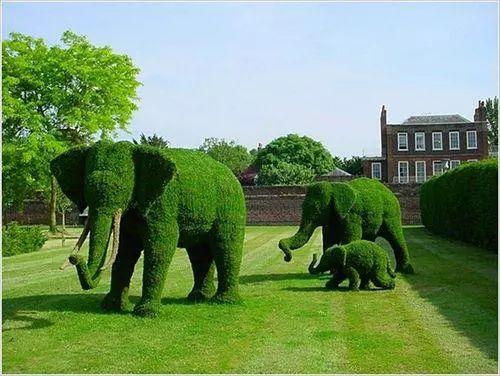绿植雕塑:生态文化旅游的创意新领域