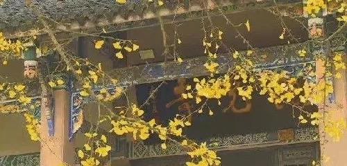 重庆的千年古寺 你去过几个?