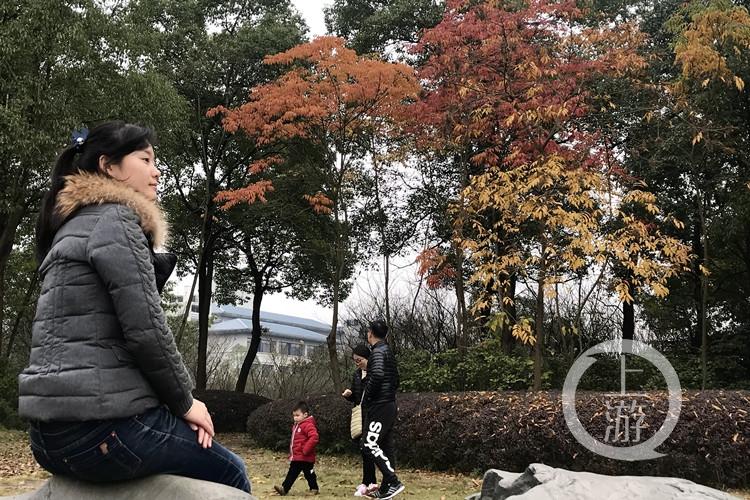 downLoad-20171219132336_副本.jpg