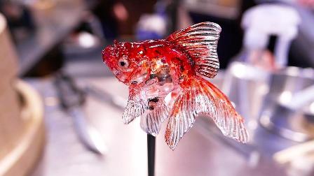 日本东京糖果艺术金鱼、青蛙、猫、狗
