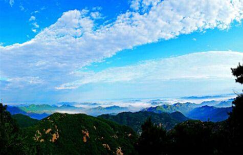"""""""中国森林氧吧""""新榜出炉!山东这些地方上榜图片"""
