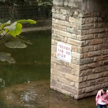 寒冬河里洗衣服 市民 是节约还是污染
