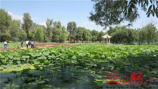 新疆奎屯市锦绣园风景区被命名为国家3a级景区