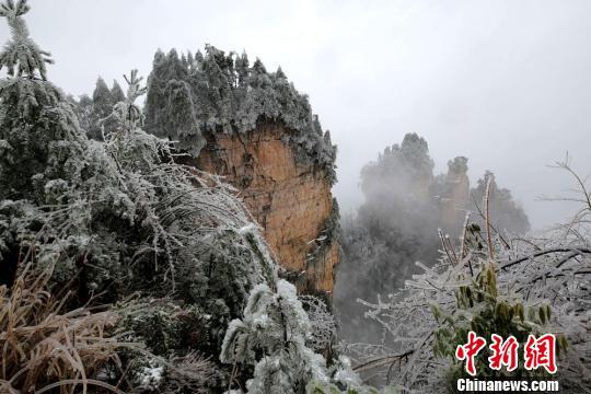 冰雪染峰林 吴勇兵 摄