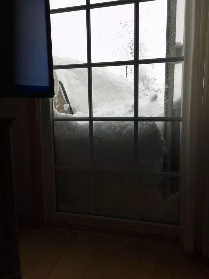 一下雪,全世界都成戏精了