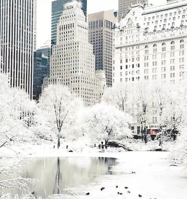 Image result for 纽约城市街头无独有偶