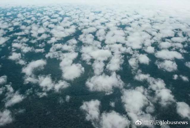 一望无际的刚果盆地雨林来源:Kevin McElvaney/Greenpeace