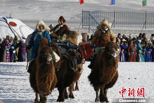2018年银色乌珠穆沁――草原冰雪那达慕节1月13日在西乌旗开幕。庞大的骆驼队出现在冰雪那达慕开幕式现场。这些骆驼长约4米,高约3米。 刘立摄