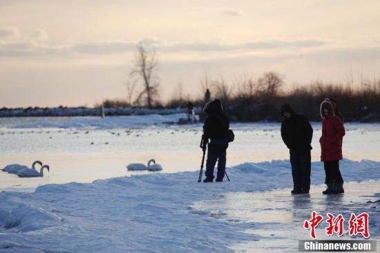 多伦多民众严寒中踏冰赏冬景_资讯频道_凤凰网