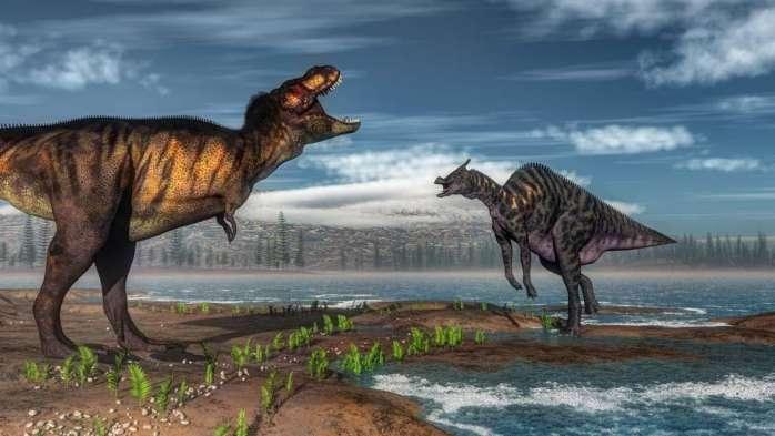 地球生命的诞生绝非偶然,追溯到5.5亿年前,细菌向高级动物进化