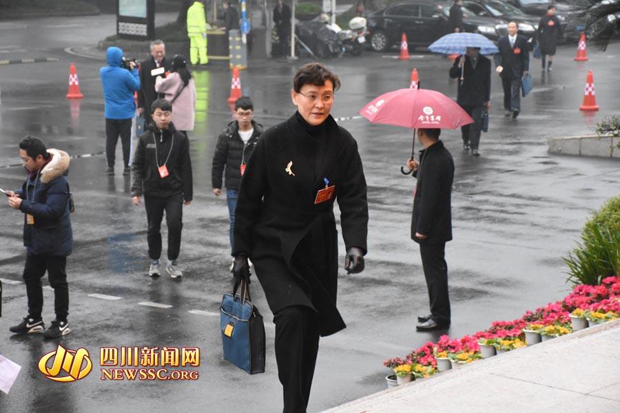 靓丽风景线! 女性政协委员步入省政协十二届一次会议会场
