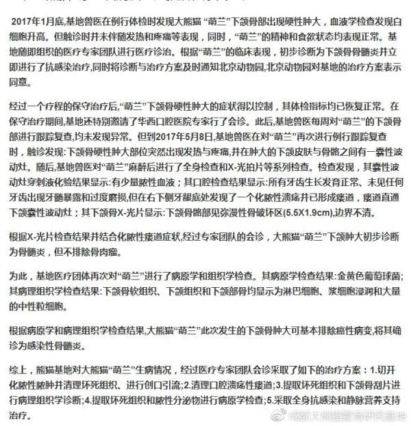 """成都熊猫繁育基地回应""""虐待大熊猫""""传闻"""