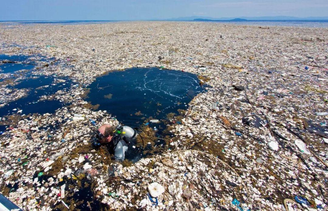 纪录片《蓝色星球2》展示了令人震惊的海洋塑料污染。 全球每年被丢弃的塑料垃圾超过3000万吨,其中超过2000万吨将会流入大海。在巴西圣保罗的海岸,超过95%的海滩垃圾为塑料制品,如瓶子、吸管、渔网等。这些塑料制品,一旦被海洋动物吞食,或缠住了海洋动物——如去年在深圳杨梅坑被渔网困死的抹香鲸,极有可能会导致动物死亡。 据国家海洋局2017年3月发布的《2016年中国海洋环境状况公报》,在我国45个区域的海洋垃圾中,84%的海面漂浮垃圾、68%的海滩垃圾以及64%的海底垃圾,都是塑