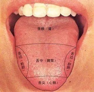 咬咬舌头,竟然能治这么多的病!太神奇了