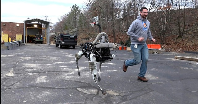 狗年说狗 四足机器人未来会成功吗?