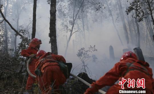 四川雅江森林火灾系人为失火 嫌疑人已被控制(图)