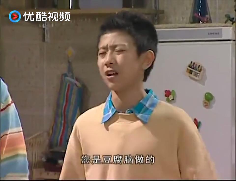 《家有儿女》刘星:您是刀子嘴豆腐心,您是豆腐脑做的