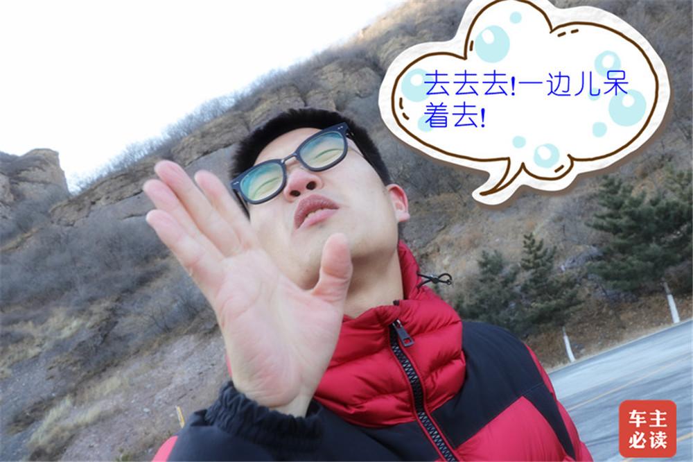 IMG_2184_副本_副本