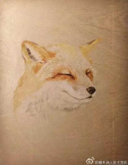 彩铅手绘狐狸蜜蜂