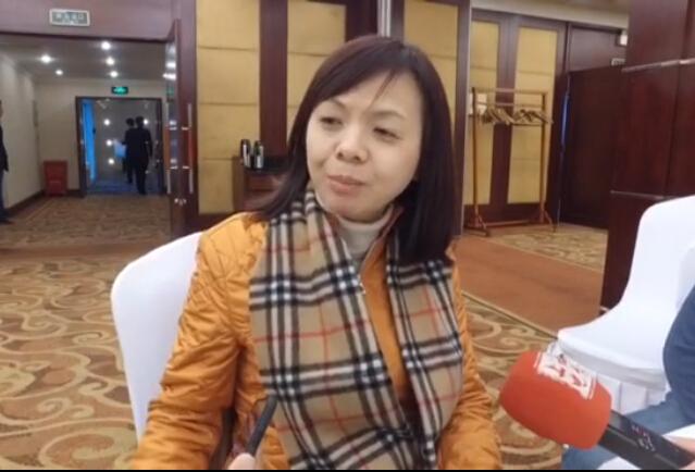 全国政协委员王美华:网络游戏的亮点就是让你