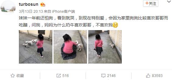 孙俪女儿遛狗被吐槽发型乱  网友:邓超扎的吧(组图)