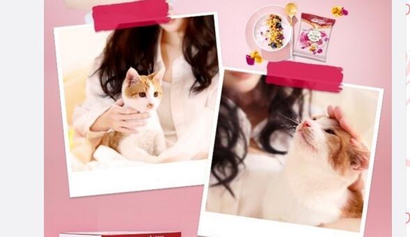 杨幂养的猫居然出道拍广告了 瞬间涨好几万粉丝!