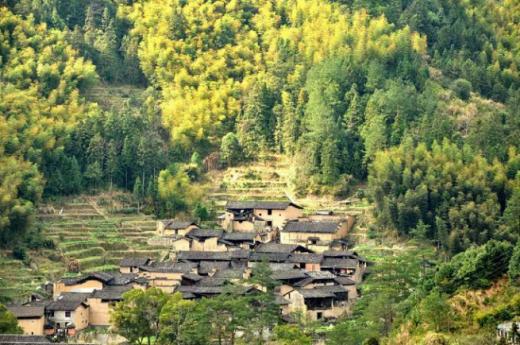 """""""民宿+美好生活聚落""""乡村旅游产业升级发展论坛"""