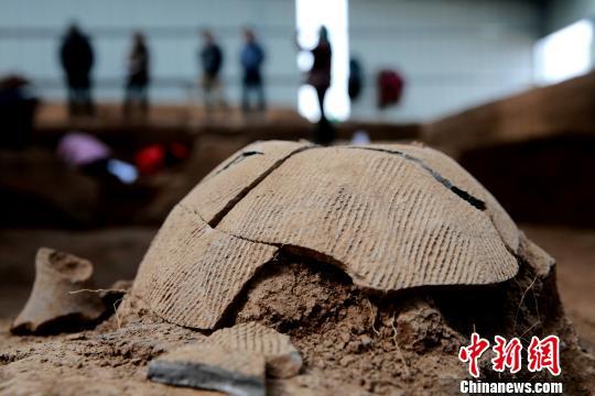 图为牛推官庄南遗址出土的陶器。 梁�� 摄