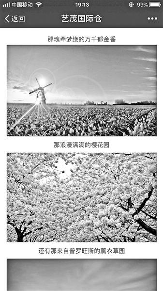 花海变盆栽小吃又贵又难吃 郑州美食节遭吐槽
