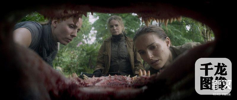 莉娜检查鲨齿鳄牙齿