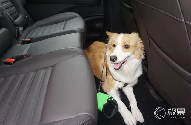 雷诺ESPACE试驾体验:驾驶舒适不无聊,后排宽敞能养狗