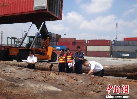 广东一季度外贸额1.56万亿贸易顺差收窄22.3%