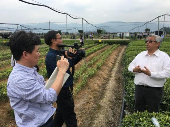 联合国粮农组织专家对农业云物联网茶园全托管模式表示肯定 考察过程中