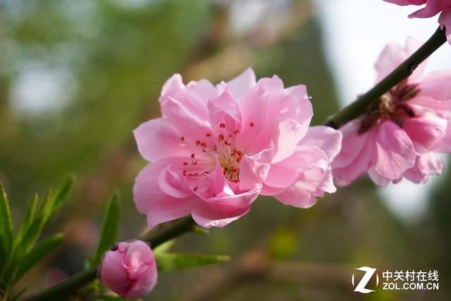 春日京城之美 佳能微单EOS M5行摄体验