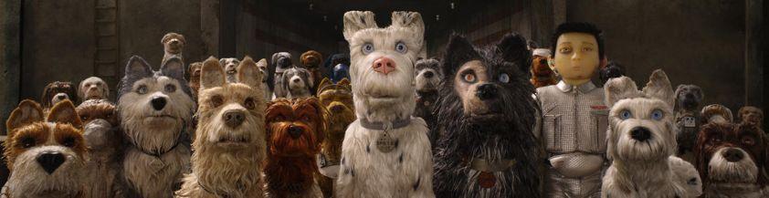 看完《犬之岛》我只有一个想法:好想要个狗啊!