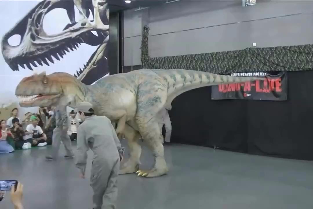 日本仿真霸王龙展示,霸王龙假装吃人的瞬间挺吓人的