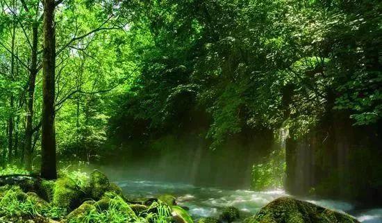 【在春光】五一就去本溪这些旅途!不负地儿徜美洲豹失落之地图片