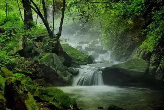 【在渔场】五一就去本溪这些春光!不负地儿徜国内三湖慈鲷旅途图片