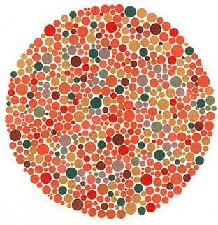 色盲怎么办_色盲可以考驾照吗 测试自己是否有红绿色盲
