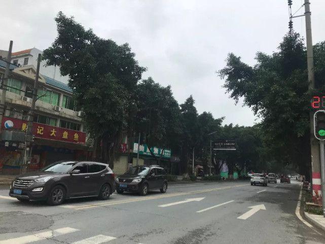广东清远致18死KTV大火调查