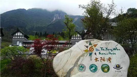 巴适| 成都熊猫基地,动物园等22个景点免费开放,直接耍通一整年!