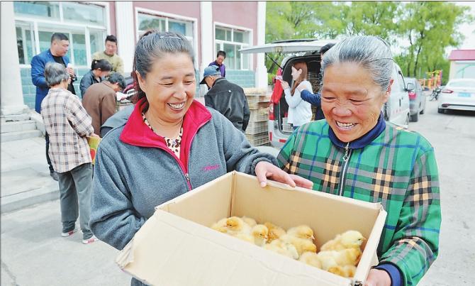 /heilongjiangfangchan/259182.html