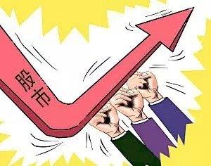 万科将召开股东会审议利润分配方案,二股东宝