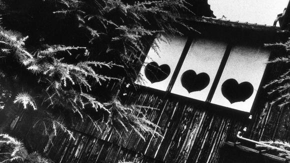 """日本摄影家石内都:""""我拍摄的是时间"""""""