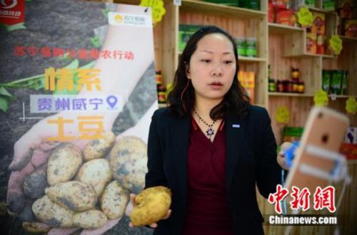 """苏宁易购发起""""情系贵州威宁土豆""""公益助农活动"""