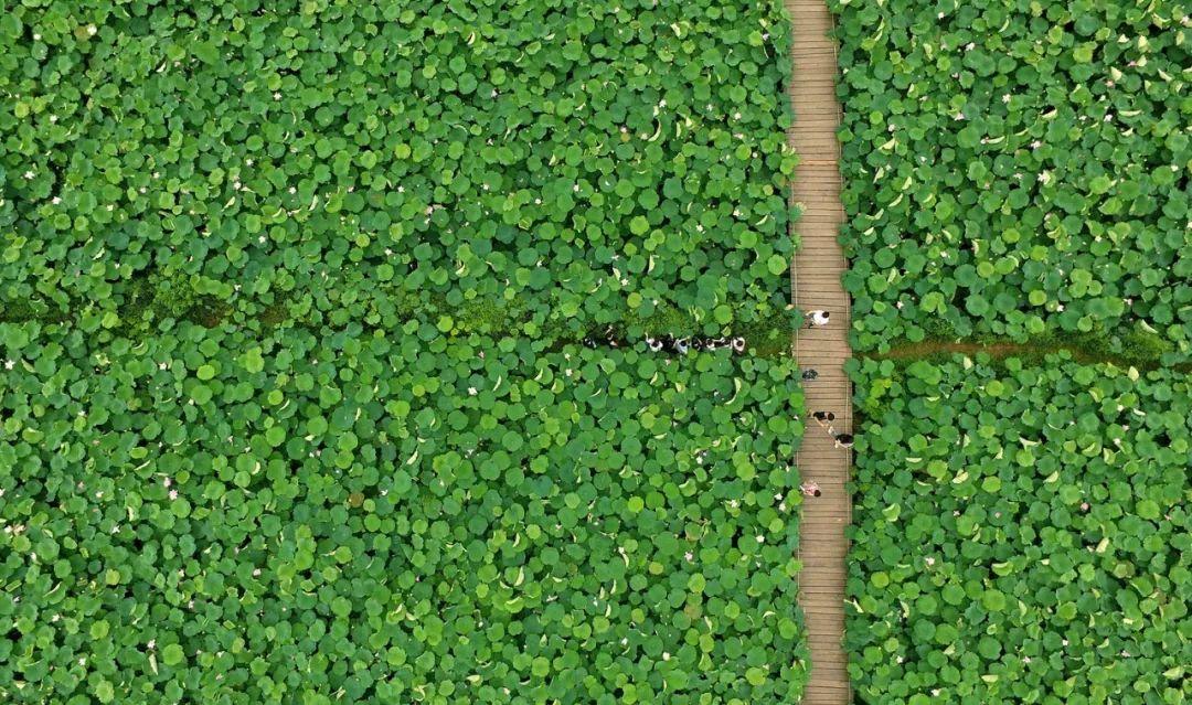 太美 外媒评选出的这几张航拍中国照片,每一张都能当壁纸
