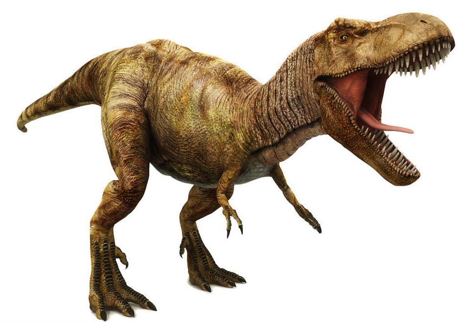 史前食草动物的绝地反击,三角龙是否可以打倒霸王龙