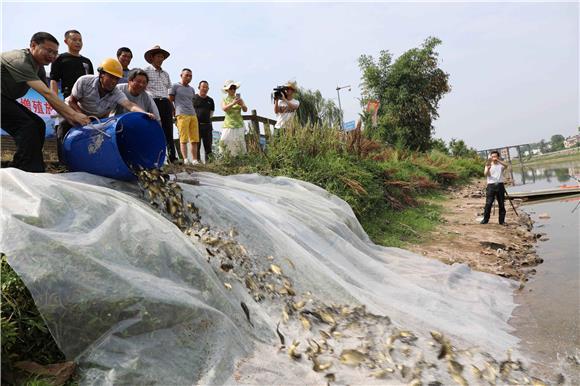 梁平开展龙溪河增殖放流活动 保护水域生态环境