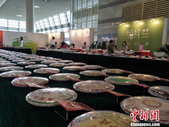 东莞国际茶业博览会1日在广东东莞开幕。图为展览现场1500多款老茶琳琅满目 李纯 摄